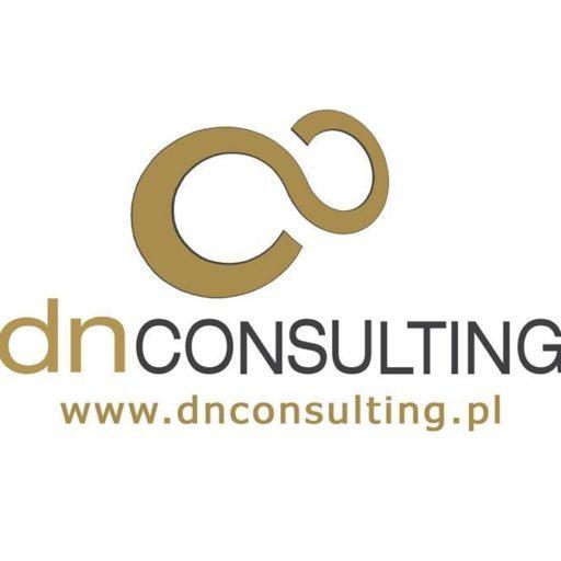 DN Consulting logo